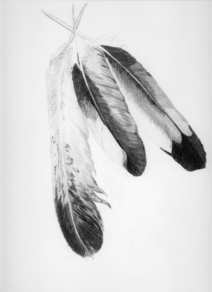 Three eagle feather